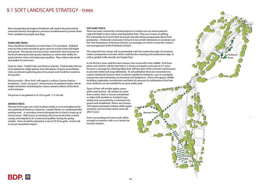 Park tree strategy
