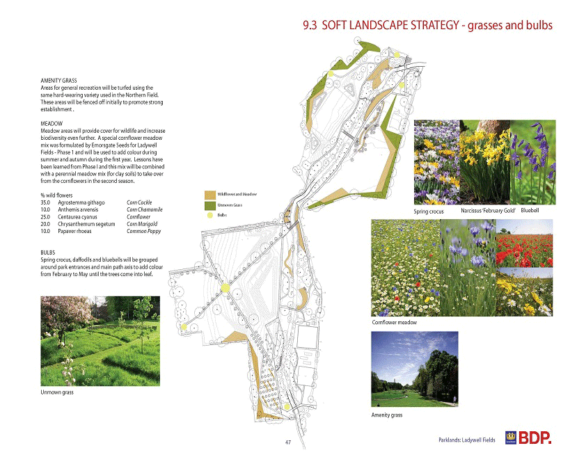 Park planting strategy
