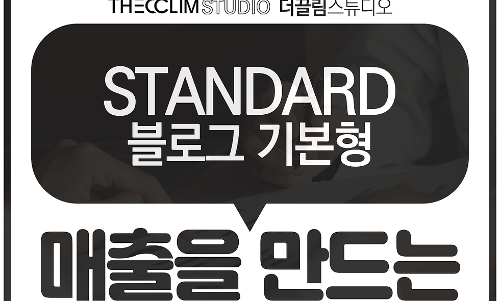 홈페이지형 블로그 - 스탠다드