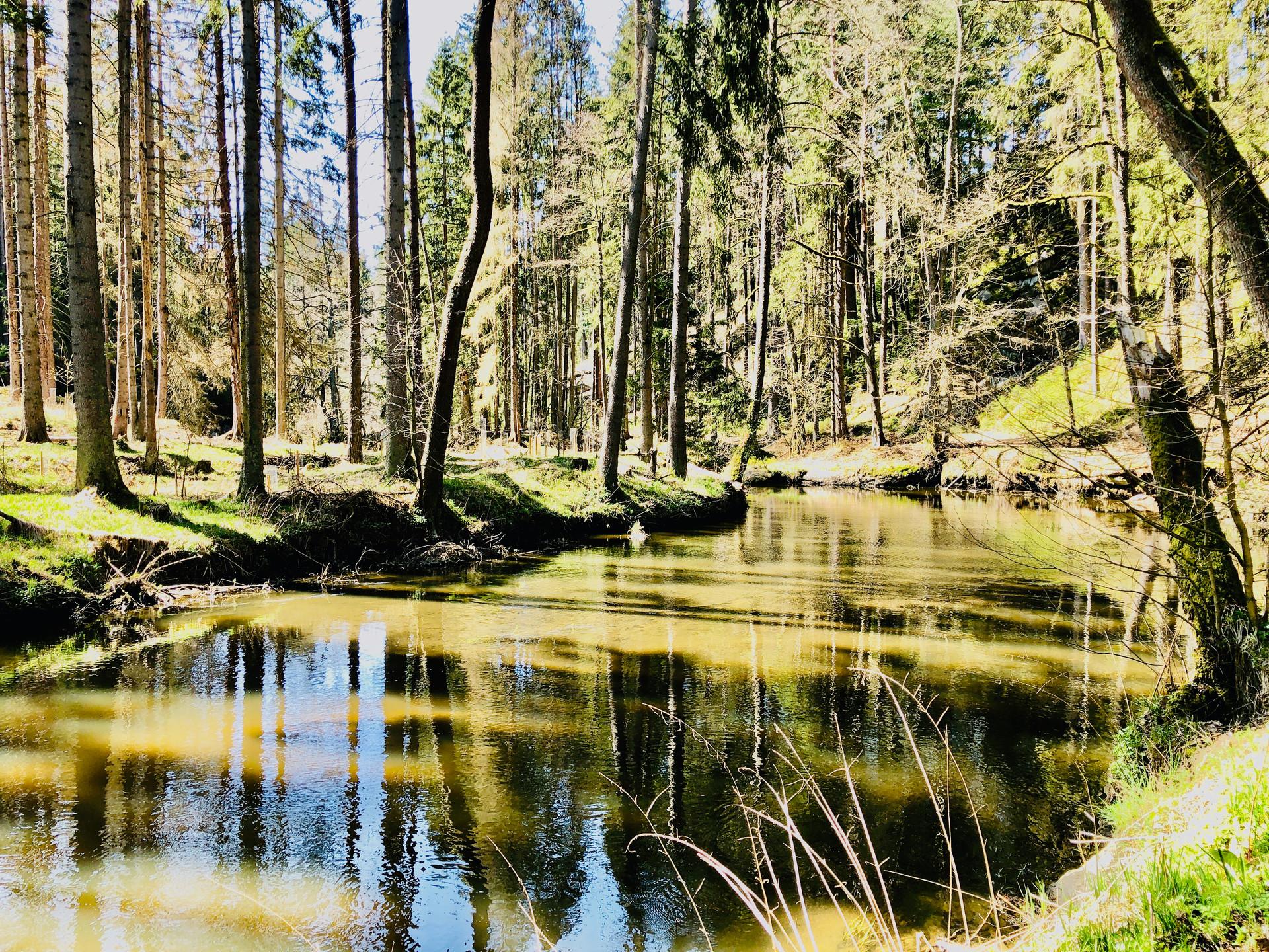 Waldnaabtal