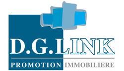 Logo DG LINK