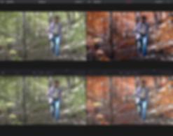 Screen Shot 2018-10-30 at 12.04.00 PM.pn