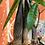 Thumbnail: Pachira acquatica
