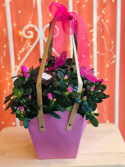 Azalea - Paper Bag