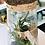 Thumbnail: Terrarium Donna 5