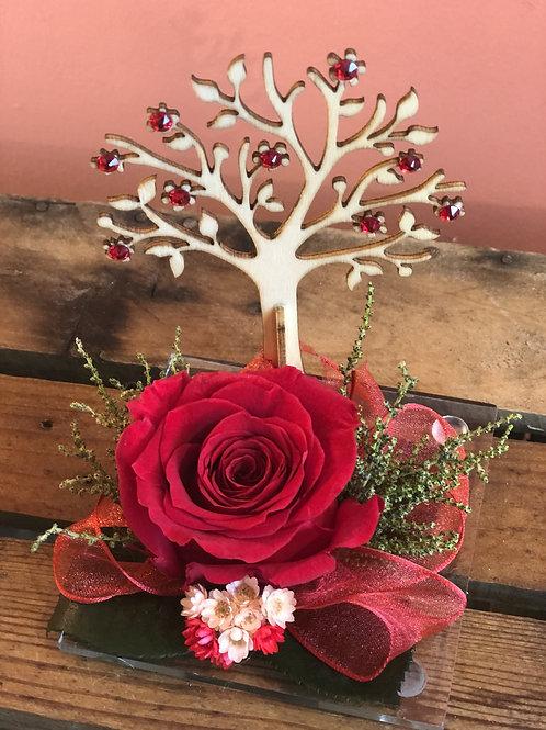Rosa Stabilizzata Albero della Vita