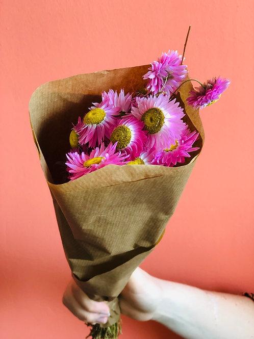 Mazzo di fiori di elicriso