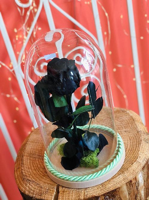 Campana di vetro Luxury - Rosa nera