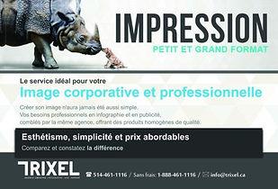Belle Impression Trixel Flyer