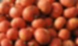 bright orange squash.png