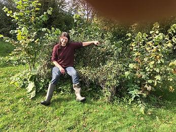 My willow bench.jpg