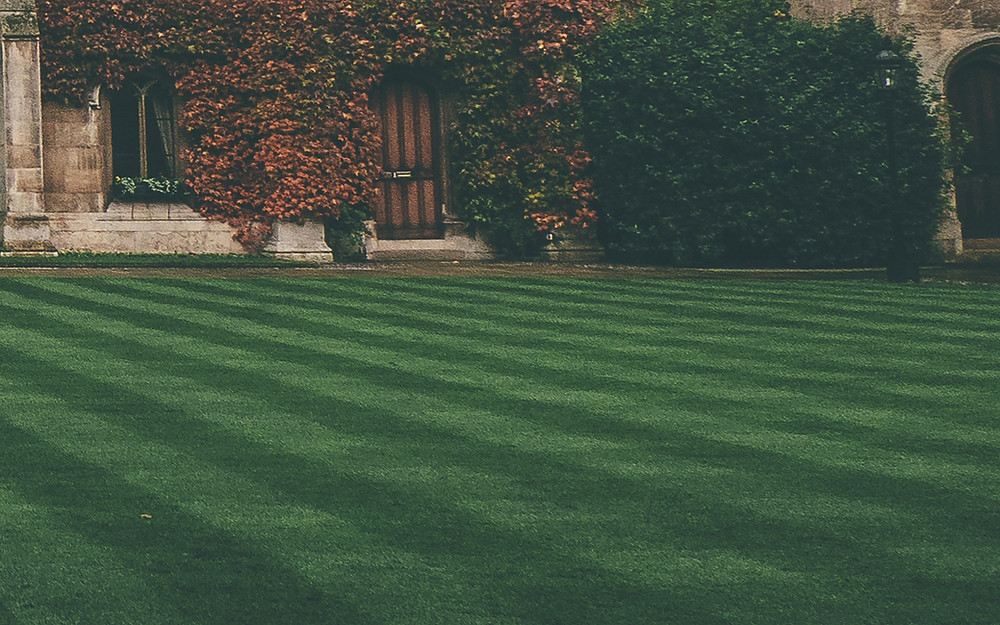lawn care real estate
