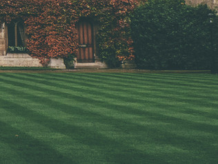 The Secret to a healthy Lawn is aeration