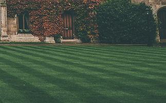 Hazır çim ve çim uygulamaları