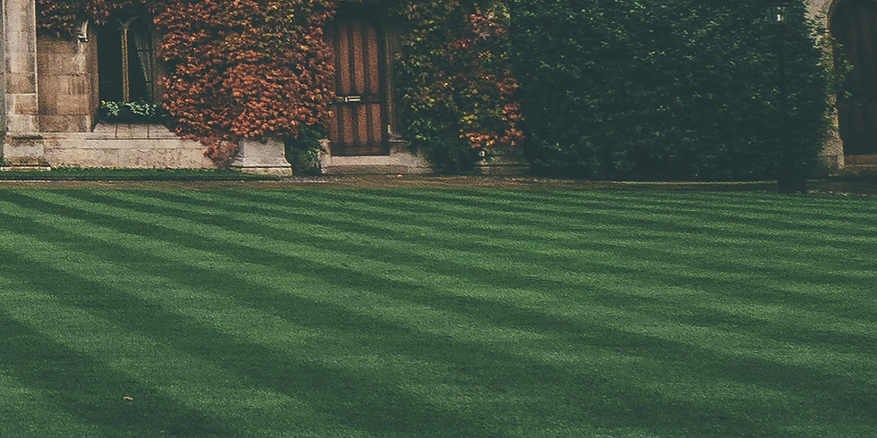 Top Tips to get a Green, Healthy and Weed Free Lawn