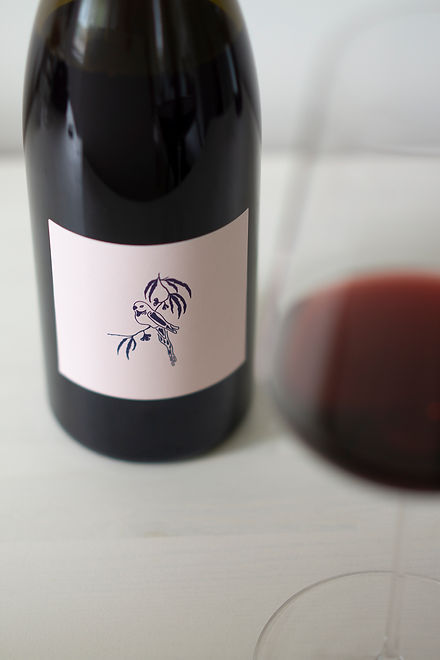 warragul Syrah close up bottle.jpg