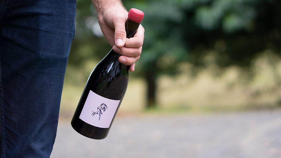 Ryan holding a bottle of 2020 Syrah.jpg