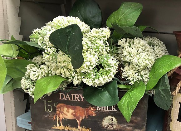 COUNTRY DAIRY MILK FLORAL