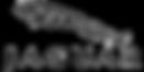 xcapture-decran-2012-03-.png