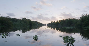 """A photo of the early morning bayou from Southern filmmaker Brent Joseph's documentary, """"Beirut on the Bayou."""""""
