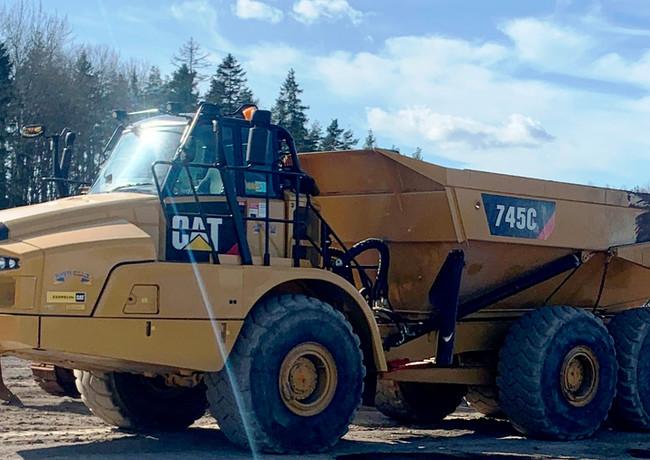 Cat 745.jpg