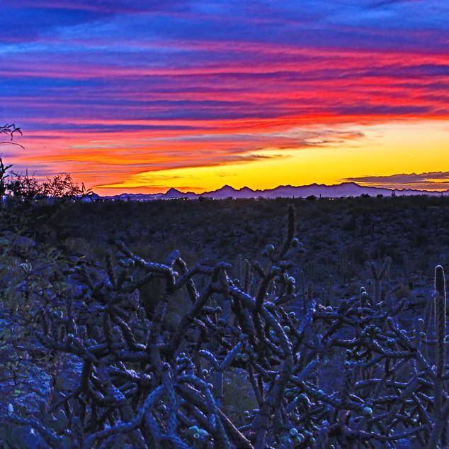 desert-sunset_49609689847_o.jpg