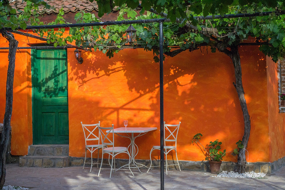 lovely picture with orange wall and green garden