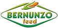 logo%20bernunzo%20in%20rilievo_edited.pn