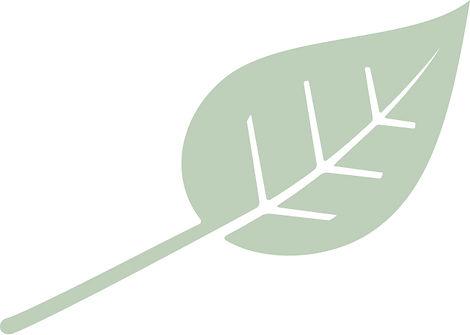 LeafIcon.jpg