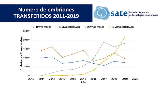 Estadisticas SATE 2019 -  transferidos a