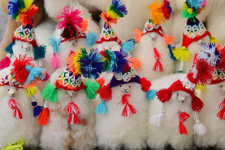 Image of fluffy alpacas with colorful traditional hats.