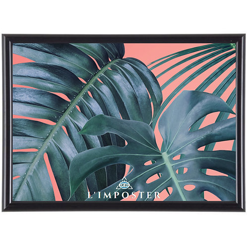 Affiche Illustration Nature poster feuille de palmier