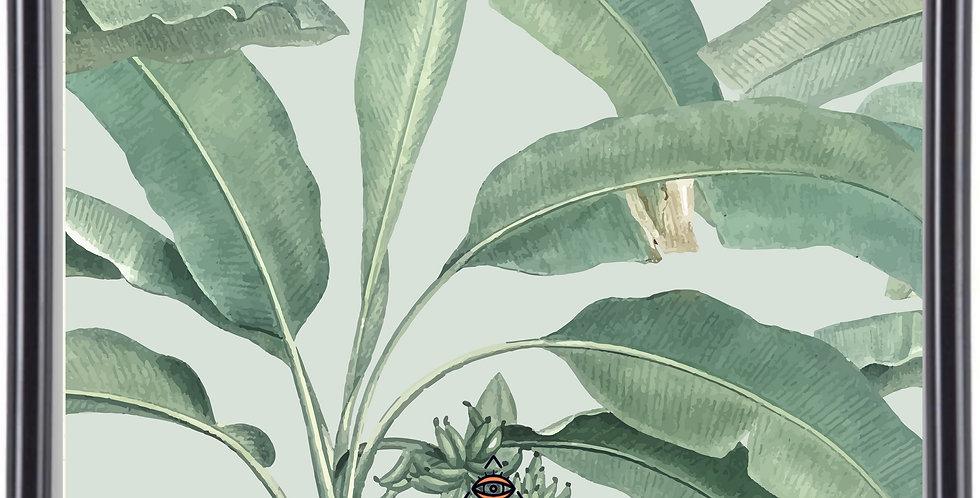 Affiche Illustration feuille de bananier 273
