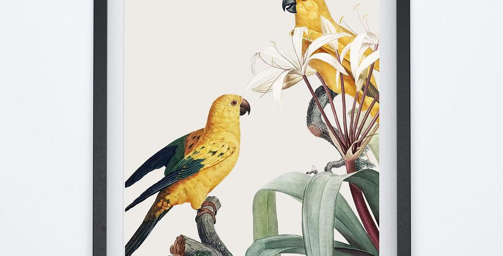 Affiche oiseaux jaunes sur leur branche 210