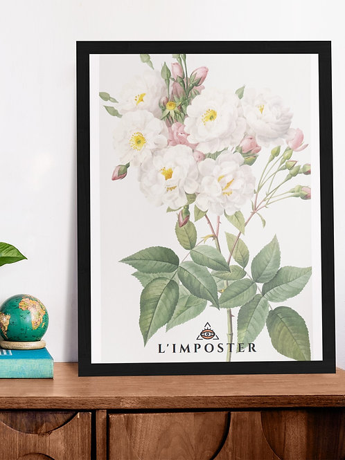 Affiche Illustration Nature fleur
