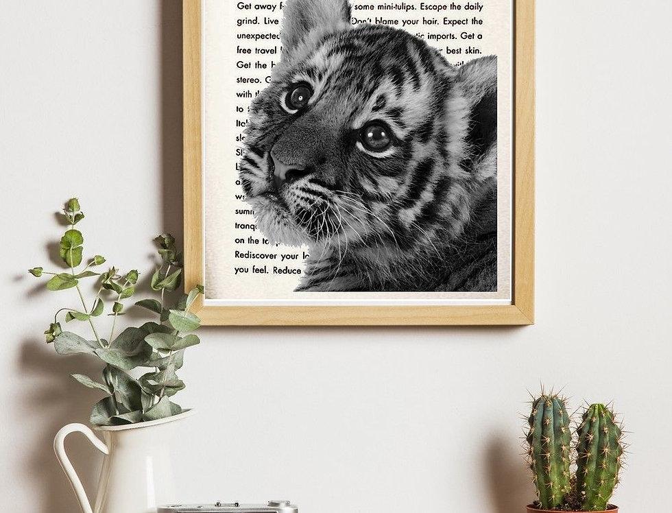Affiche vintage Tigre