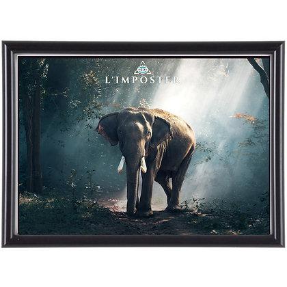 Affiche Éléphant 281