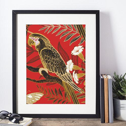 Affiche illustration perroquet