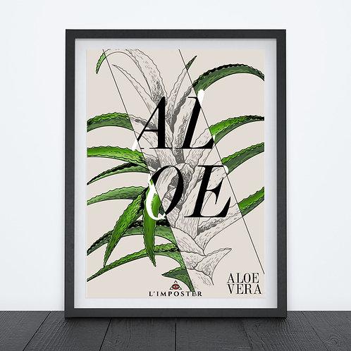 Affiche Aloe vera nature fleur