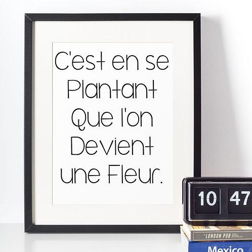 Affiche citation une fleur