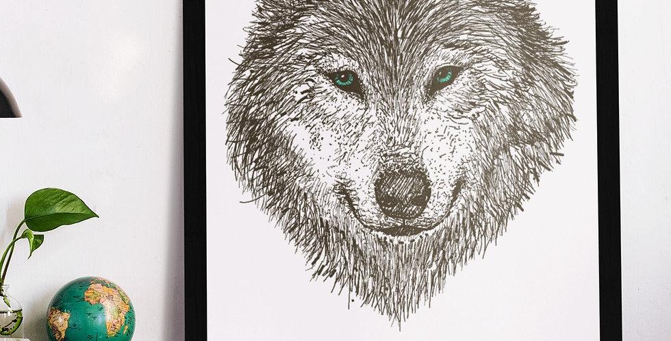 Affiche Loup 285