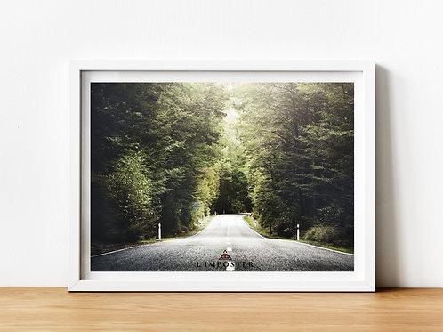 Affiche route forêt