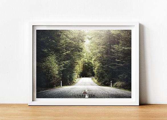 Affiche route forêt 169