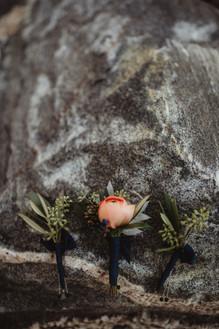 Twig & Olive Photography
