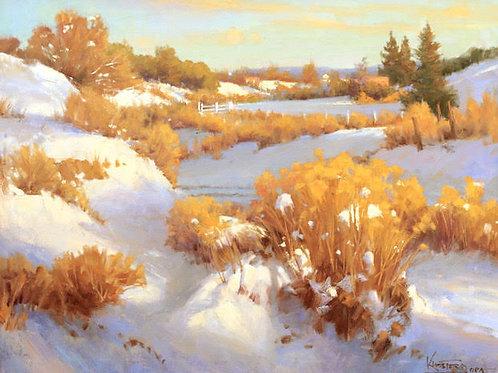 Snow Field - Winter Light