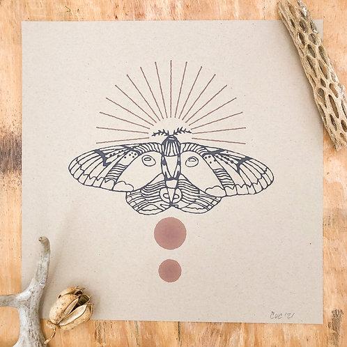 Racoon Moth Print