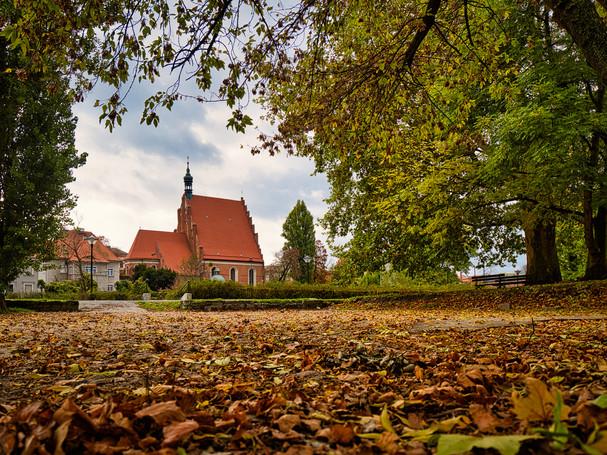 Bydgoszcz - Herbst Katedra