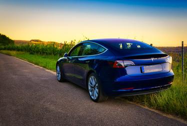 Tesla Model 3 Blau Weinberge
