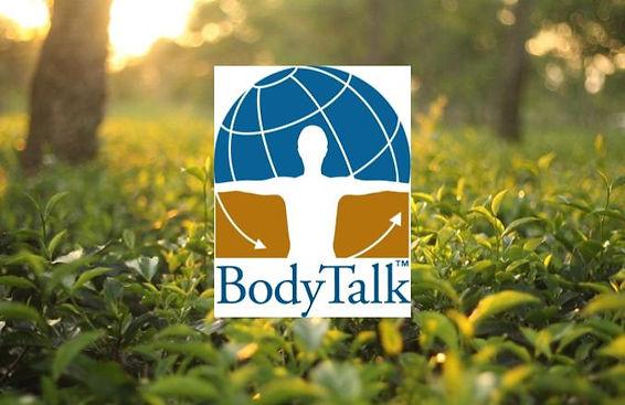 Copy of bodytalk consciousn trial.jpg