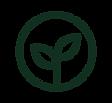 PLANTS-27.png